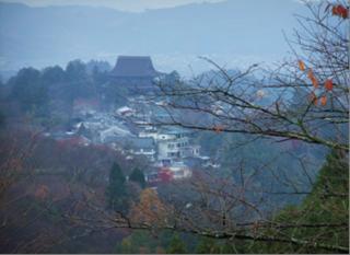 kiki20121201_1.png